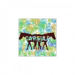 CAPSULE - Self-Titled (Tape+Demo+Tour+More) LP