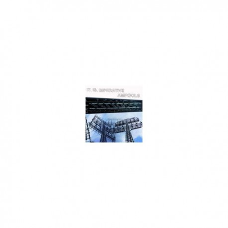 IT IS IMPERATIVE / AMPOOLS - Split LP