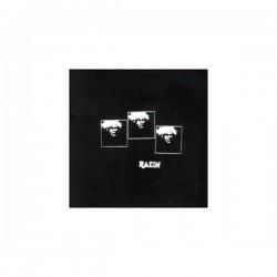 RAEIN - Il N'y A Pas De Orchestre LP