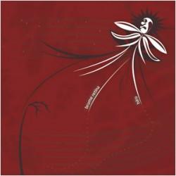 HIRO / BRUME RETINA - Split CD
