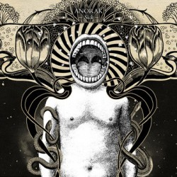 ANORAK - Sick LP