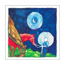CALEXICO / IRON AND WINE - In The Reins LP