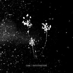 OAK/ INTO THE TIDE - Split 12""