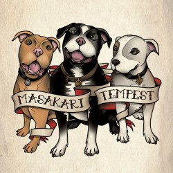 """MASAKARI / TEMPEST - Split 7"""""""