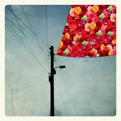 ABRAKADABRA / MAGNAPINNA - Split LP