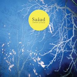 SAAAD - Delayed Summer LP