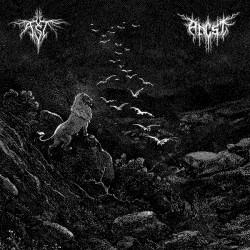 ANCST / AST - Split LP