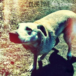 OLDE PINE - The Jawns LP
