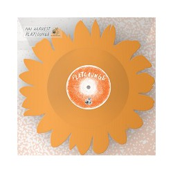 NAI HARVEST/ PLAYLOUNGE FLOWER - Split 12''