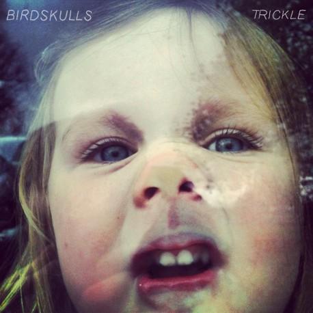 BIRDSKULLS - Trickle LP