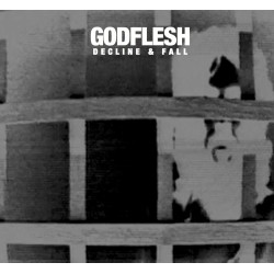 GODFLESH - Decline and Fall LP