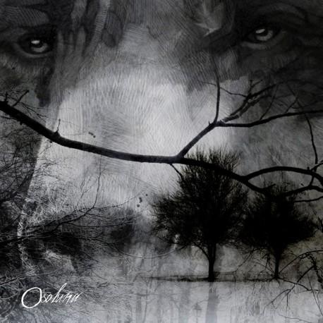 OSO LUNA -Oso Luna LP