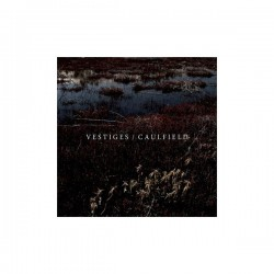 VESTIGES / CAULFIELD - Split 7""